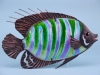 Striped Fish Wall Art