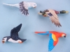 Flying Bird Magnets