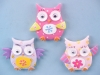 Colourful Owl Magnet