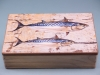 Double Mackerel Box - 22 x 14 x 6cm