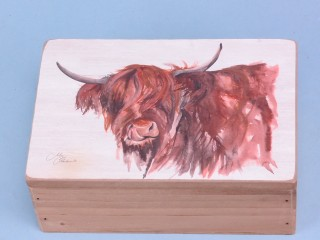 Highland cow box - 15x10cm