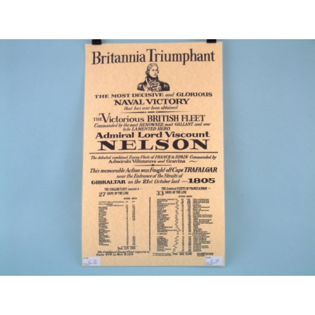 Nelson Poster